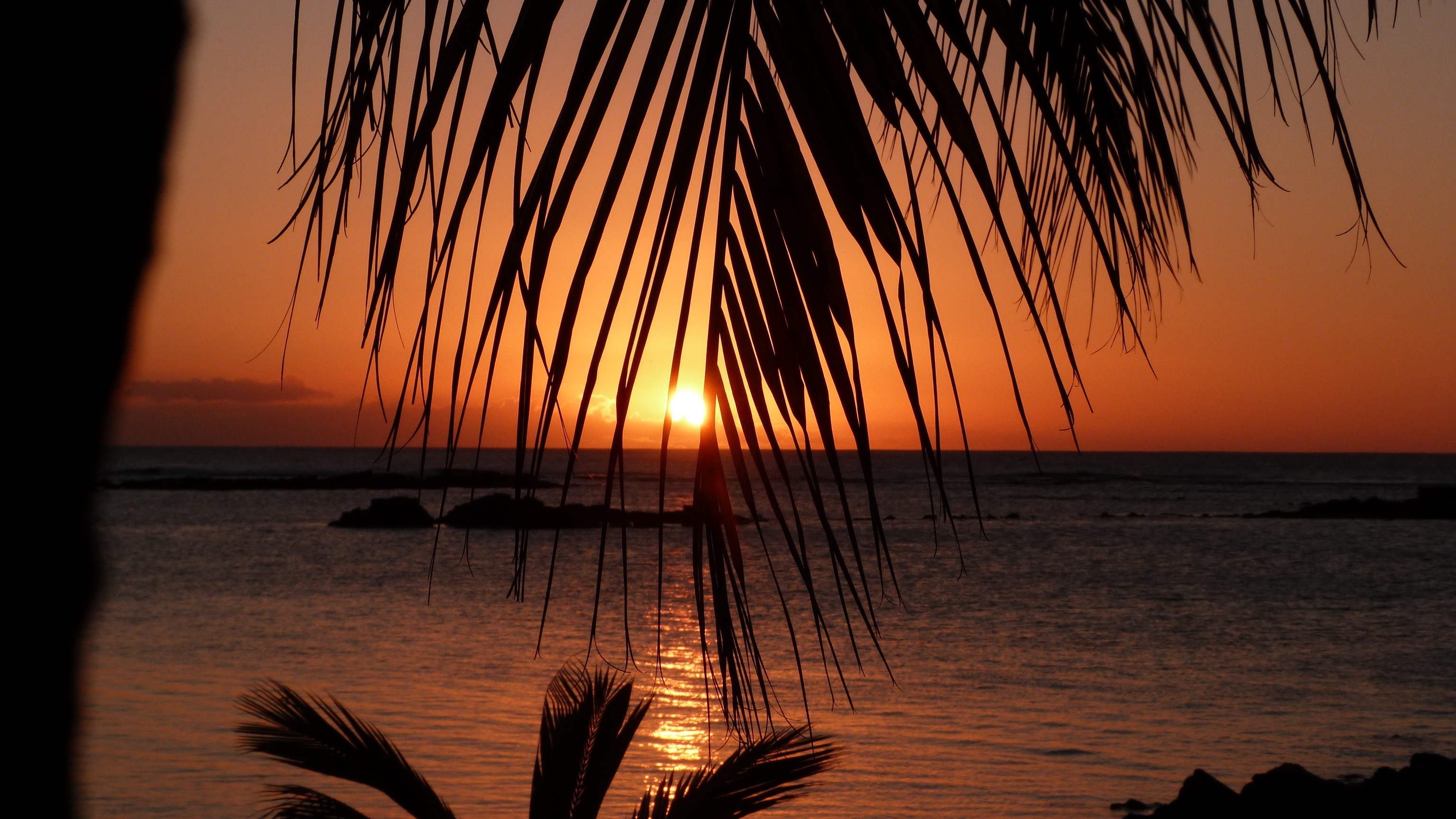 VOYAGES OUTRE-MERS ile-maurice-sunset-palmiers-mer